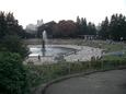 文化の日、世田谷公園